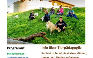 Plakat Hoffest 2016